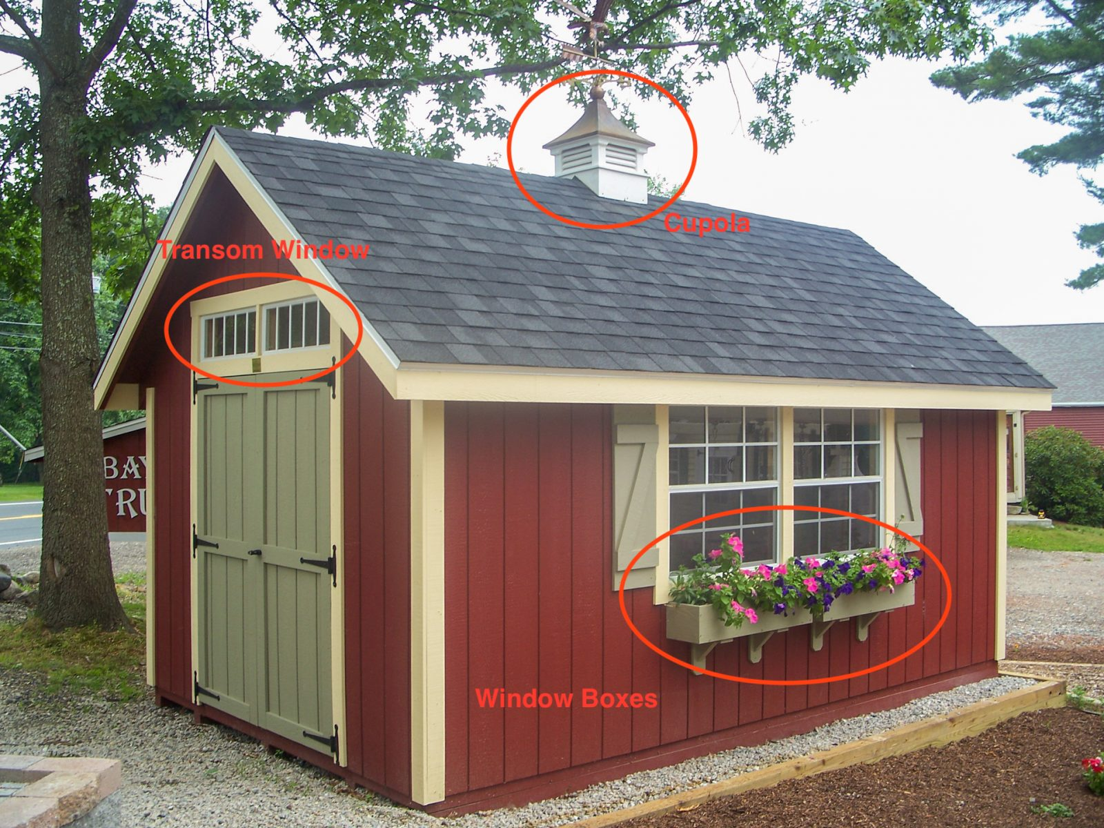 how much does a shed cost if it has options