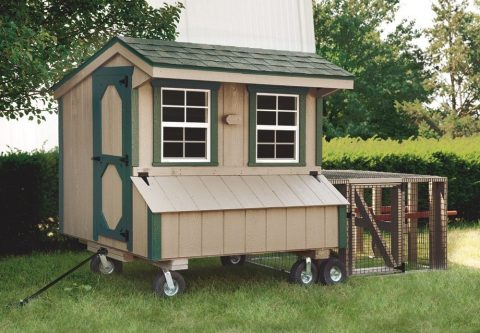 chicken coops at hometown structures