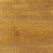 mushroom stain e1448978728952 200x200