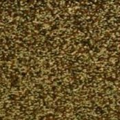 cedar shingles for dog kennel 2400x9999