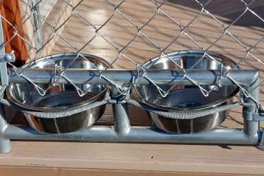 stainless steel feeder bowls dog kennel options 2400x9999