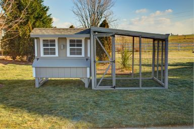 chicken coop accessories mg 9843 4 5 fused 384x384